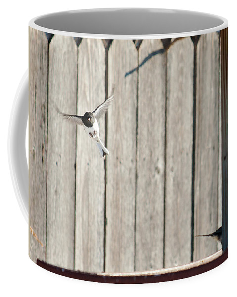 Heron Haven Coffee Mug featuring the photograph Incoming by Edward Peterson