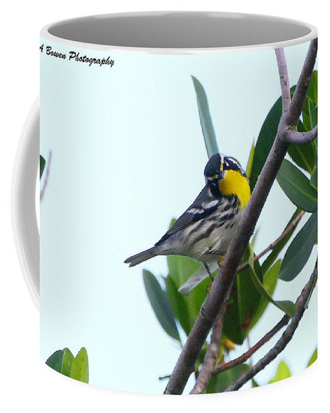 Yellow Throated Warbler Coffee Mug featuring the photograph Inquisitive Yellow Throated Warbler by Barbara Bowen