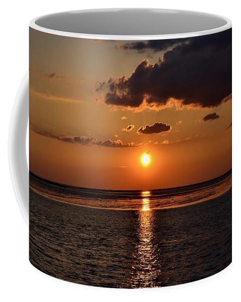 Sunrise Coffee Mug featuring the photograph Into The Sun by Kari Tedrick