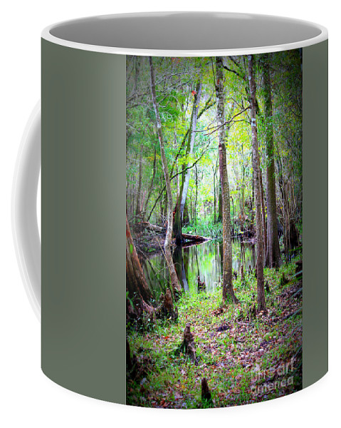 Swamp Coffee Mug featuring the photograph Into The Swamp by Carol Groenen