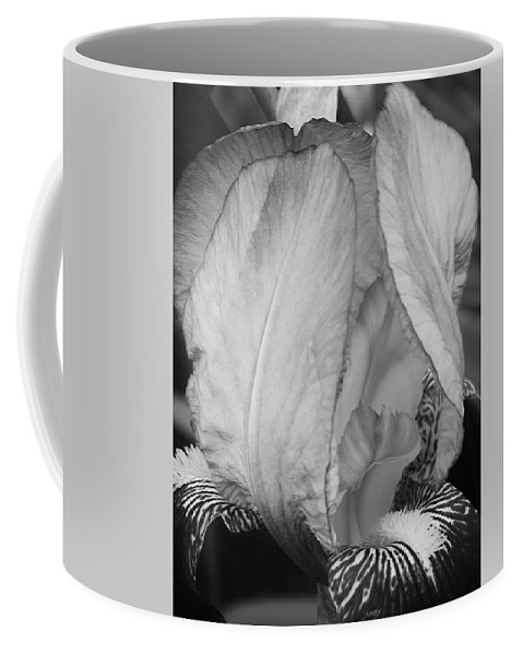 Flora Coffee Mug featuring the photograph Iris 2 In Black And White by Bruce Bley