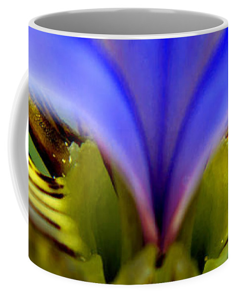 Flower Coffee Mug featuring the photograph Iris Eyes by Tikvah's Hope