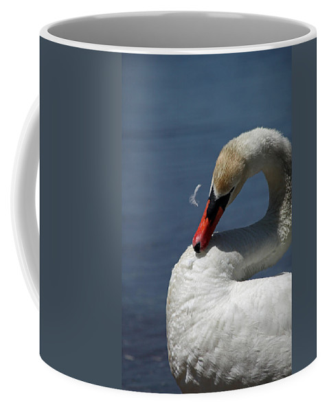 Swan Coffee Mug featuring the photograph Its Like Pulling Hair by Karol Livote
