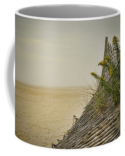 Beach Coffee Mug featuring the photograph Jersey Shore by Heather Applegate