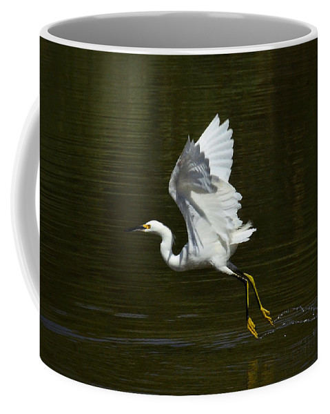 Great Egret Coffee Mug featuring the photograph Just A Hop And A Skip by Saija Lehtonen
