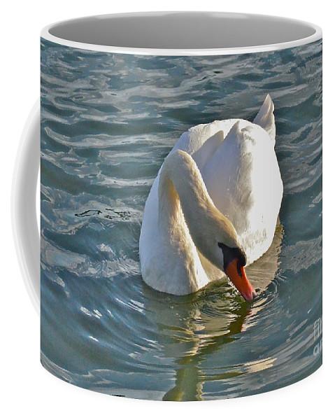 Swan Coffee Mug featuring the photograph Just A Sip by Carol Bradley