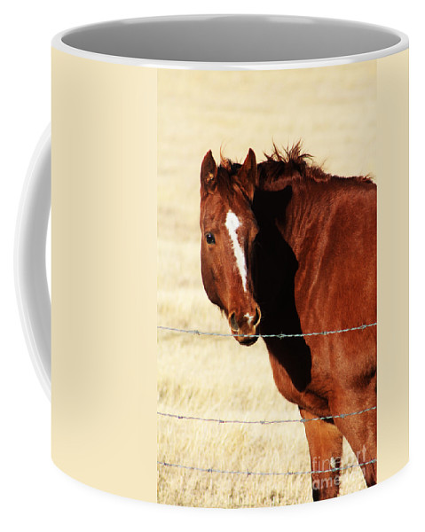 Alberta Coffee Mug featuring the photograph Just Me And My Shadow by Alyce Taylor