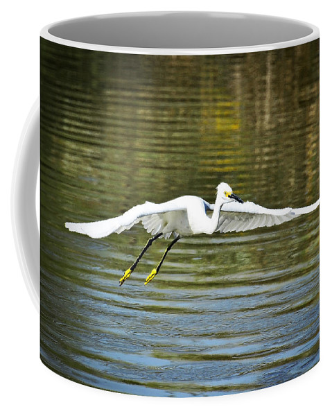 Snowy Egret Coffee Mug featuring the photograph Just Soar by Saija Lehtonen