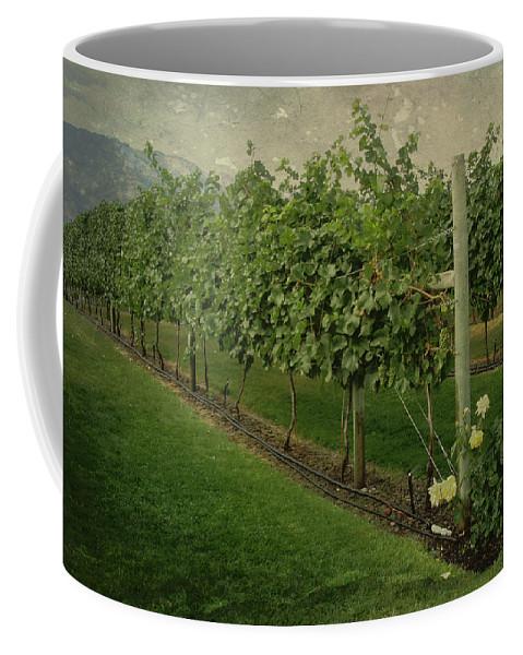 Vineyard Coffee Mug featuring the photograph Kelowna Vineyard by Marilyn Wilson