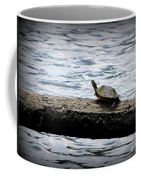 Turtle Coffee Mug featuring the photograph Kerplunk by Priscilla Richardson