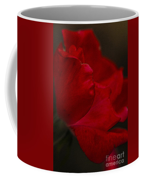 Rose Coffee Mug featuring the photograph Kissed by Kim Henderson