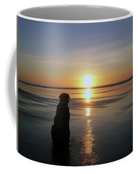 Pet Coffee Mug featuring the photograph Labrador Watching The Sun Set by Pamela Patch
