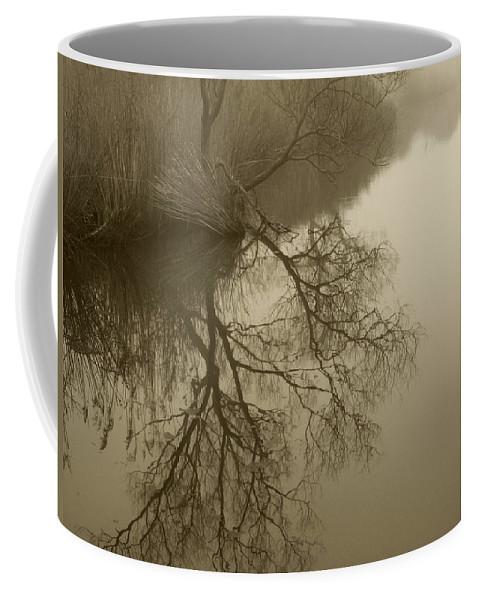 Lake Agawam Coffee Mug featuring the photograph Lake Agawam by Steve Gravano
