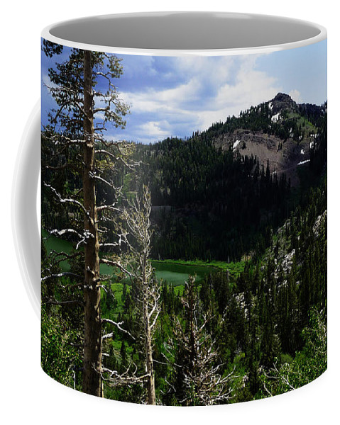North California Coffee Mug featuring the photograph Landscape - Carson Pass 1 by Xueling Zou