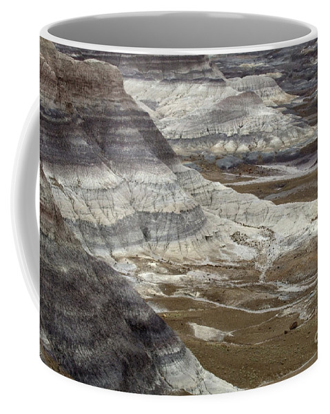 Petrified Forest Coffee Mug featuring the photograph Landscape Petrified Forest by Bob Christopher