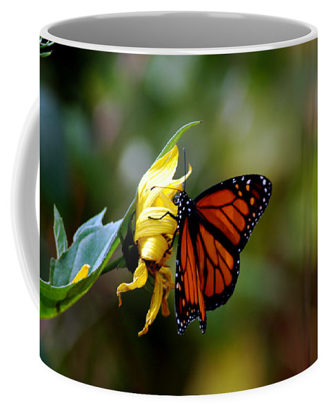 Usa Coffee Mug featuring the photograph Last Kiss Of The Butterfly by LeeAnn McLaneGoetz McLaneGoetzStudioLLCcom