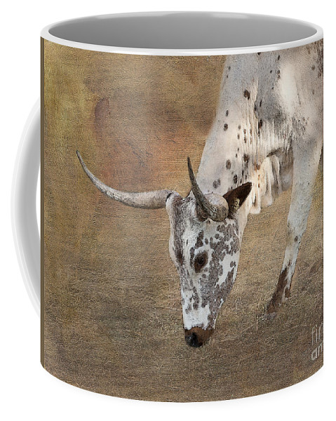 Texas Longhorn Coffee Mug featuring the photograph Lazy Days by Betty LaRue