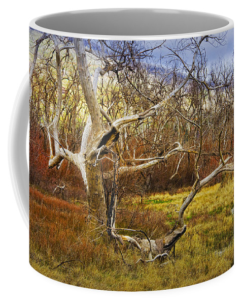 Art Coffee Mug featuring the photograph Leaf Barren White Tree Trunk In California No.1500 by Randall Nyhof