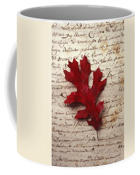 Leaf Coffee Mug featuring the photograph Leaf On Letter by Garry Gay