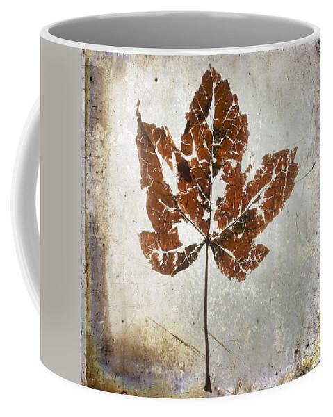 Broken Coffee Mug featuring the photograph Leaf With Textured Effect by Bernard Jaubert