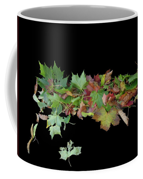 Leaves Coffee Mug featuring the photograph Leaves On Sidewalk by Martin Brockhaus