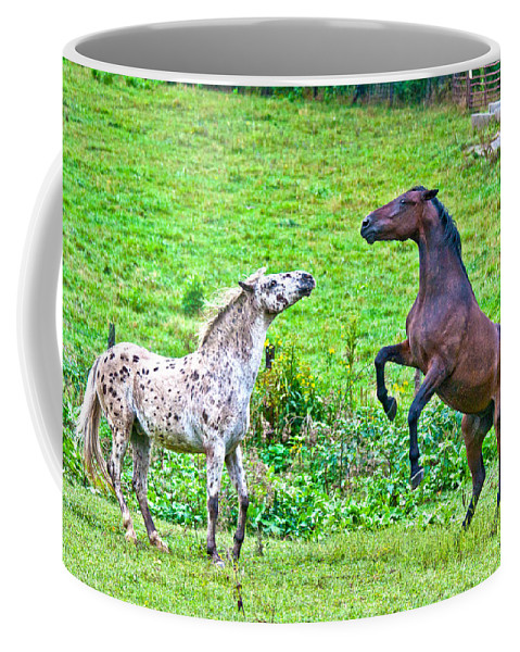 Leopard Coffee Mug featuring the photograph Leopard V Standardbred by Betsy Knapp
