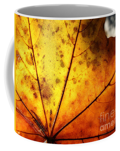 Abstract Coffee Mug featuring the photograph Letter Dropt From God? by Jay Taylor
