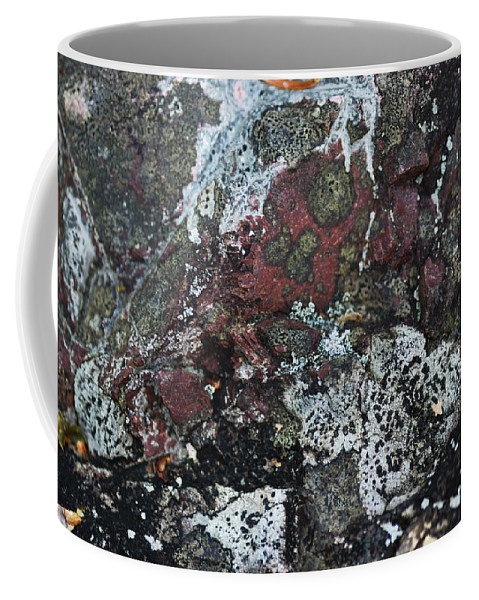 Abstract Coffee Mug featuring the photograph Lichen Abstract II by Susan Capuano