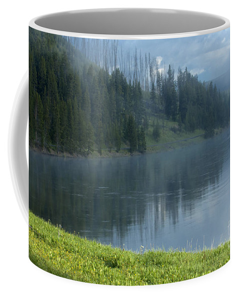 Bronstein Coffee Mug featuring the photograph Lifting Fog On The Yellowstone by Sandra Bronstein