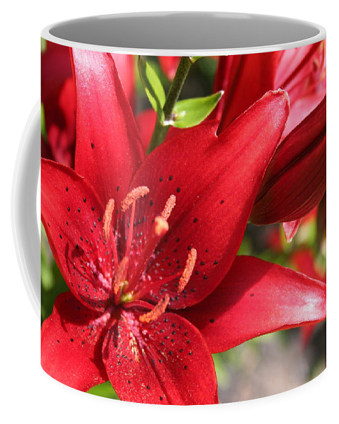 Red Coffee Mug featuring the photograph Lilies In Red by Laurel Talabere