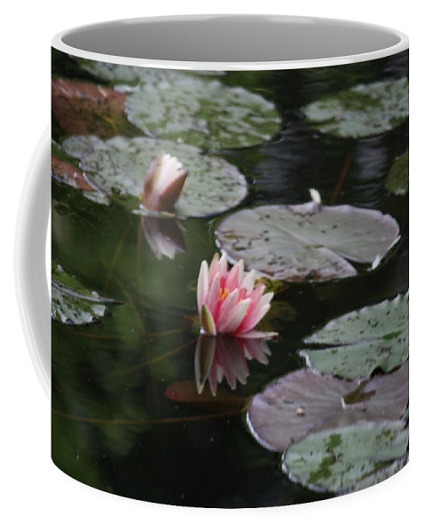 Lily Pads Coffee Mug featuring the photograph Lily Pads by Donna Walsh