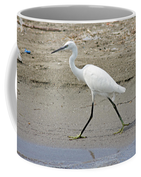 Egret Coffee Mug featuring the photograph Little Egret by Tony Murtagh