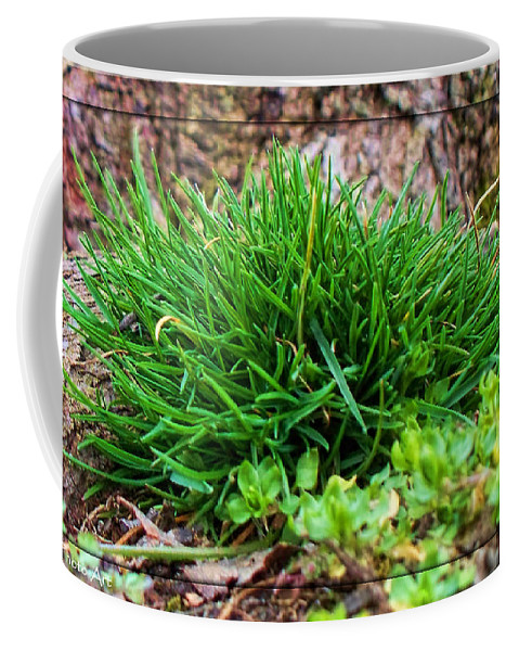 Nature Coffee Mug featuring the photograph Little Grass Mound by Debbie Portwood