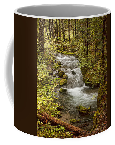 Little Zig Zag Stream Coffee Mug featuring the photograph Little Zig Zag Stream by Wes and Dotty Weber
