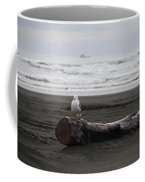 Gull Coffee Mug featuring the photograph Lone Gull by Michael Merry
