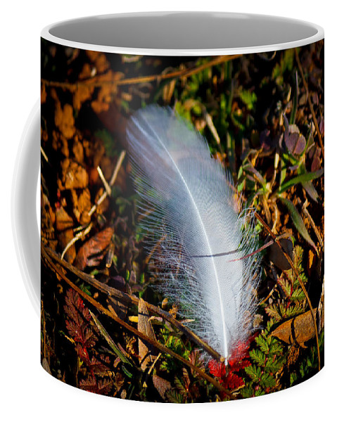 Green Coffee Mug featuring the photograph Lonely Feather by Doug Long