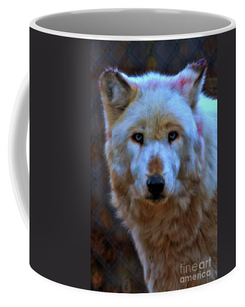 White Phase Grey Wolf Coffee Mug featuring the photograph Looking At You by Tommy Anderson