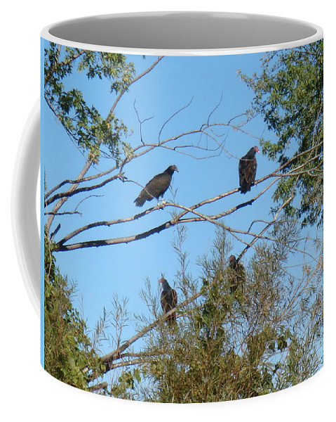 Vultures Coffee Mug featuring the photograph Looking For A Meal by Bonfire Photography