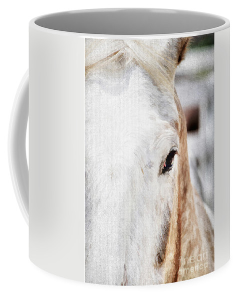 Animal Coffee Mug featuring the photograph Looking Into Her Soul by Darren Fisher