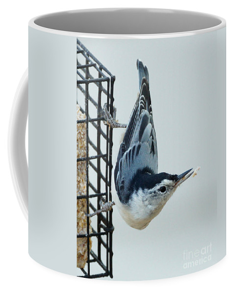 Birds Coffee Mug featuring the photograph Lost Food by Lori Tordsen