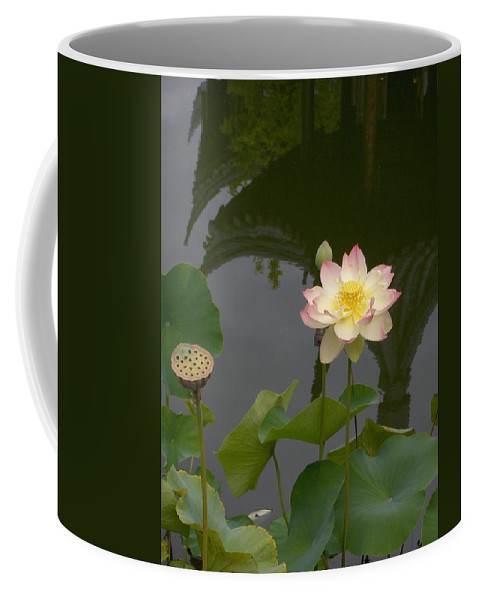Lotus Coffee Mug featuring the photograph Lotus 1 by Catherine Helmick