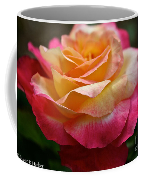 Plant Coffee Mug featuring the photograph Love And Peace by Susan Herber