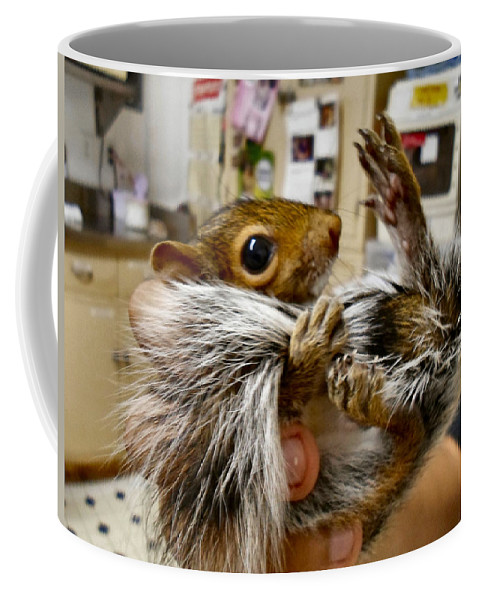 Antler Coffee Mug featuring the photograph Love My Tail by Art Dingo