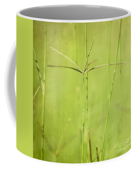 Lush Coffee Mug featuring the photograph Lush by Neil Overy