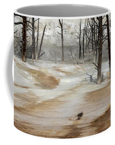 Yellowstone Coffee Mug featuring the photograph Mammoth Terrace Runoff by Sandra Bronstein