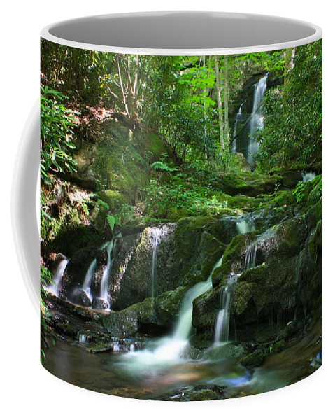 Mannis Branch Falls Coffee Mug featuring the photograph Mannis Branch Falls by Nunweiler Photography
