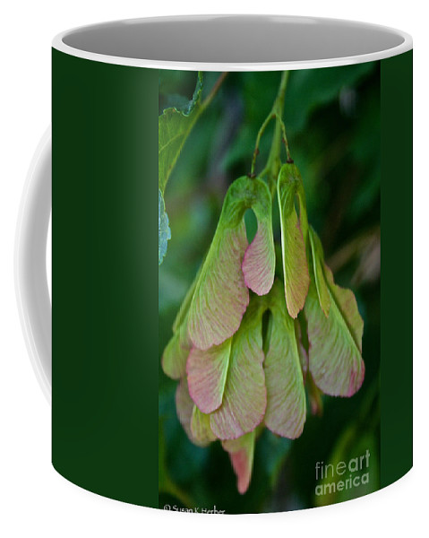 Outdoors Coffee Mug featuring the photograph Maple Seed by Susan Herber