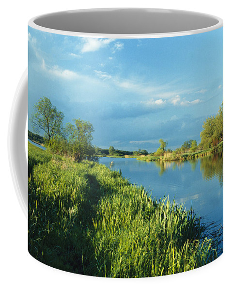 Europe Coffee Mug featuring the photograph Marshlands In Spring, Unteres Odertal by Norbert Rosing