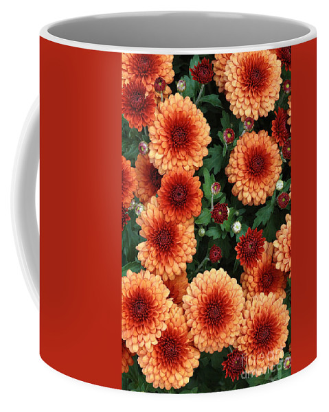 Marigolds Coffee Mug featuring the photograph Merry Marigolds by Mike Nellums