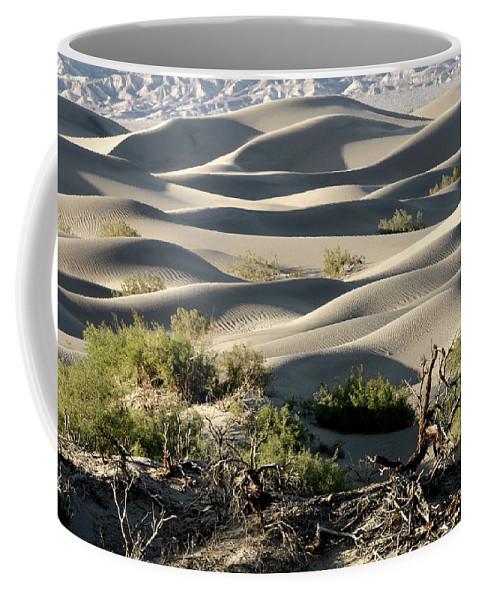 Mesquite Sand Dunes Coffee Mug featuring the photograph Mesquite Sand Dunes by Wes and Dotty Weber